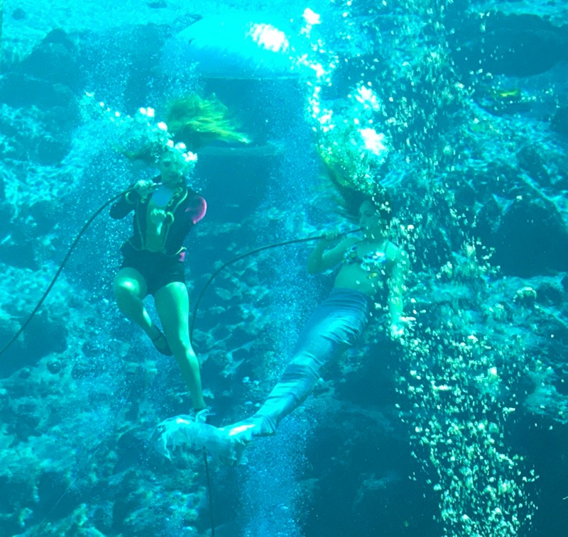 Mermaid Performers