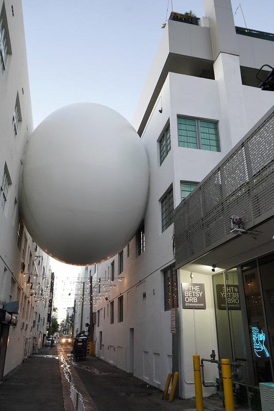Miami egg