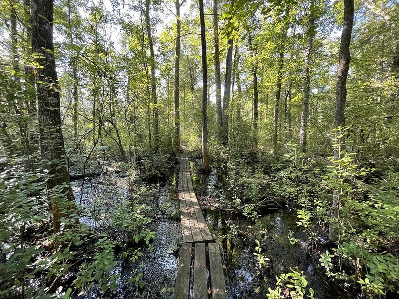 Evert Trail
