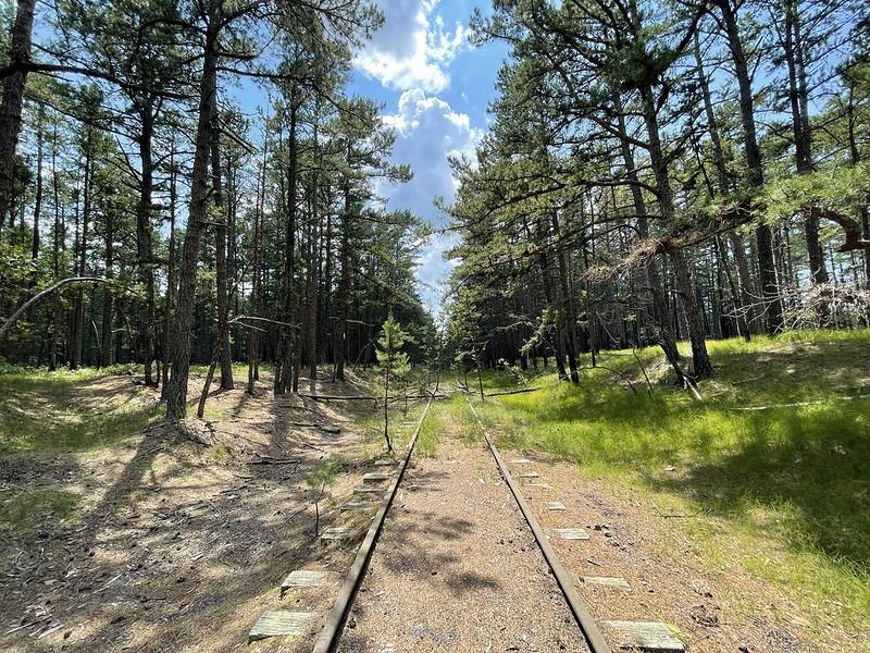 Franklin Parker Preserve railroad